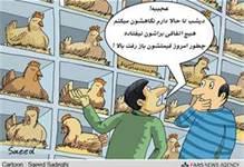 """گزارش رادیو چین از """"بحران مرغ در ایران"""""""