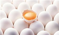 ارزیابی سیاست های حمایتی از تولیدكنندگان و مصرف كنندگان تخم مرغ در ایران