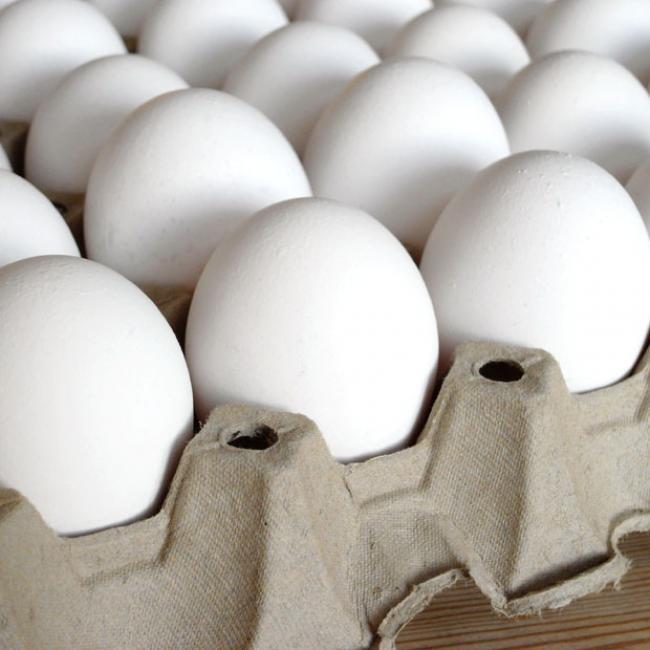 تخممرغ کیلویی ۲۰۰۰ تومان ارزان شد/فعلا خبری از آنفلوانزا نیست